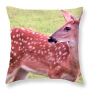 Fawn In The Waning Summer Throw Pillow