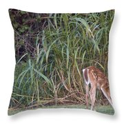 Fawn Snacking Throw Pillow