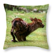 Fawn's First Steps Throw Pillow