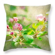 Feast Of Life 20 - Morning Mists Throw Pillow