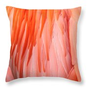 Feather Abstract 1 Throw Pillow