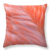 Feather Abstract 2 Throw Pillow