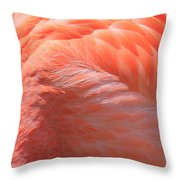Feather Abstract 3 Throw Pillow