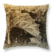 Feather And Leaf Throw Pillow