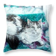 Feather Belle Throw Pillow