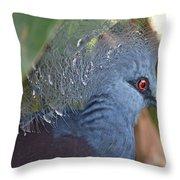 Feather Crown Throw Pillow