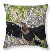 Feather Drying Throw Pillow