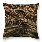 Feather Ice 2 Throw Pillow