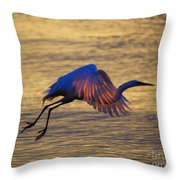 Feather-light Throw Pillow
