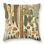 Feather Plumes-a Throw Pillow