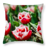Feather Red Throw Pillow