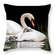 Feather Sunshade Square Throw Pillow
