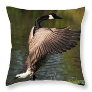 Feather Wash Throw Pillow