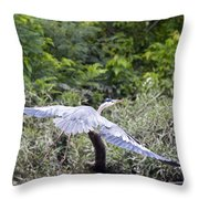 Feathering Flight Throw Pillow