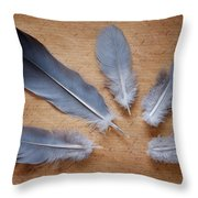Feathers And Old Letter Throw Pillow