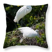 Feathers In A Twist Throw Pillow
