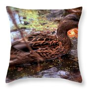 Feathers In Autumn Throw Pillow