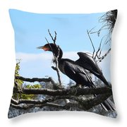 Feathers Of A Bird Throw Pillow