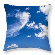 Feathertail Cloud Throw Pillow