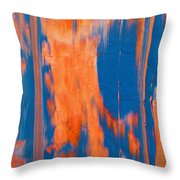 Features Throw Pillow