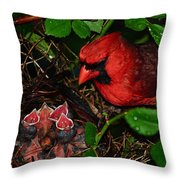 Feed Me Daddy Throw Pillow