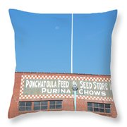 Feed Store Throw Pillow