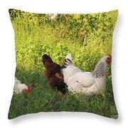 Feeding Chickens Throw Pillow