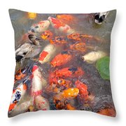 Feeding Frenzy Throw Pillow