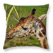 Feeding Giraffe Throw Pillow