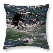 Feeding Humpback Whale Throw Pillow