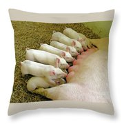 Feeding The Family Throw Pillow