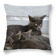 Feeding The Kittens Throw Pillow