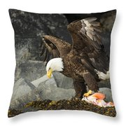 The Ultimate Bald Eagle Throw Pillow