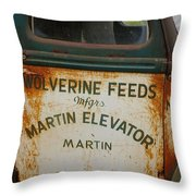 Feeds Of The Past Throw Pillow