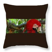 Feeling A Little Red Throw Pillow