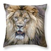 Feeling Like A King Throw Pillow