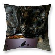 Feline Friends Throw Pillow