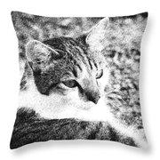 Feline Pose Throw Pillow