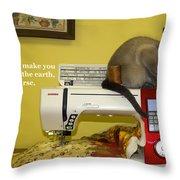 Felines Rule Throw Pillow