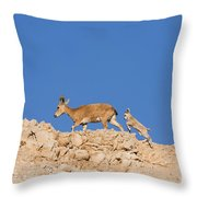 female and young Nubian Ibex Throw Pillow