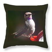 Female Anna On Perch Throw Pillow