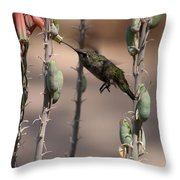 Female Anna's Hummingbird Throw Pillow