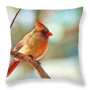 Female Cardinal - Digital Paint IIi Throw Pillow