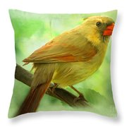 Female Cardinal In Elm Tree - Digital Paint Throw Pillow