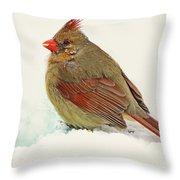 Female Cardinal In Winter II Throw Pillow