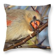 Thorns And Berries - Cardinal Throw Pillow