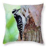 Female Downy Woodpecker Throw Pillow