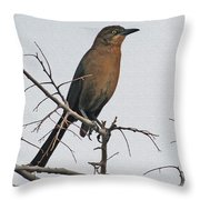 Female Grackle On Net Leaf Hackberry Tree Throw Pillow