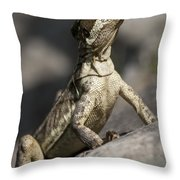 Female Jesus Lizard Throw Pillow