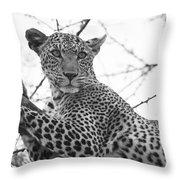 Female Leopard Throw Pillow